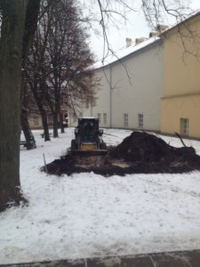 2012-12-06 Sirvydo skveras
