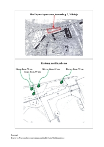 2013-07-31 Kelio ženklo projektas-p2