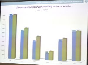 nusikalstamos veiklos Vilniaus komisariatuose 2012 vs 2013