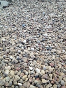 11-28-13 netinkama danga (akmenys) po lauko treniruokliais