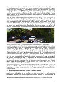 2013-12-18-pastabos del detaliojo plano, p11