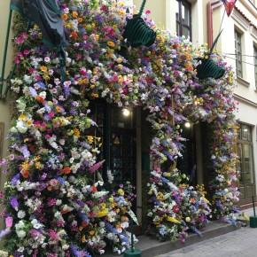 Plastikinių gėlių virusas plinta Senamiestyje…. kitšas!kitsch!